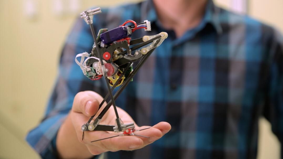 Ten robot może ci podskoczyć