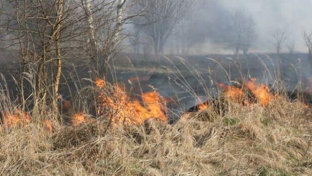Wypalanie traw nie jest bezpieczne (zdj. ilustracyjne) archiwum TVN 24